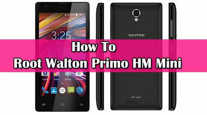 Safely Root Walton Primo HM Mini